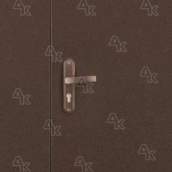 Дверь входная Б2 Профи DL
