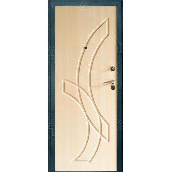 Дверь входная ТС-01